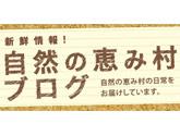 megumi_blog